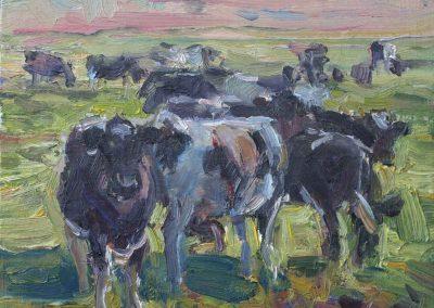 Koeien in de schemering